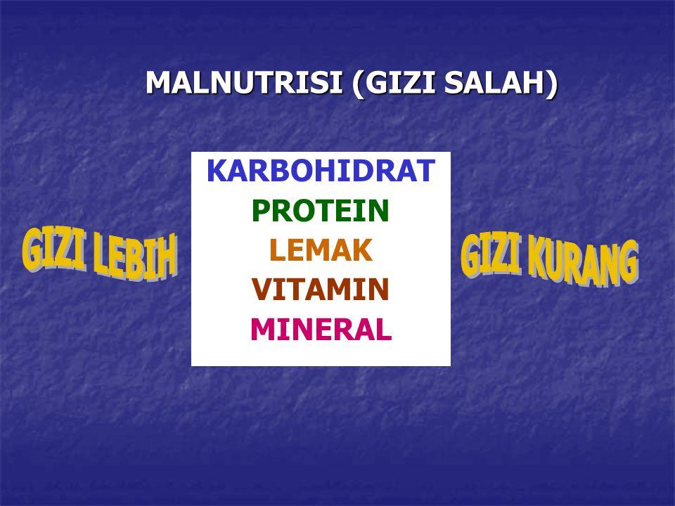 MALNUTRISI (GIZI SALAH) KARBOHIDRAT PROTEIN LEMAK VITAMIN MINERAL