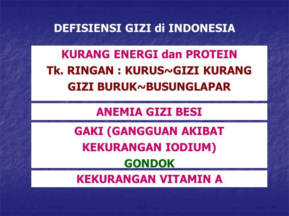 DEFISIENSI GIZI di INDONESIA KURANG ENERGI dan PROTEIN Tk. RINGAN : KURUS~GIZI KURANG GIZI BURUK~BUSUNGLAPAR ANEMIA GIZI BESI GAKI (GANGGUAN AKIBAT KE