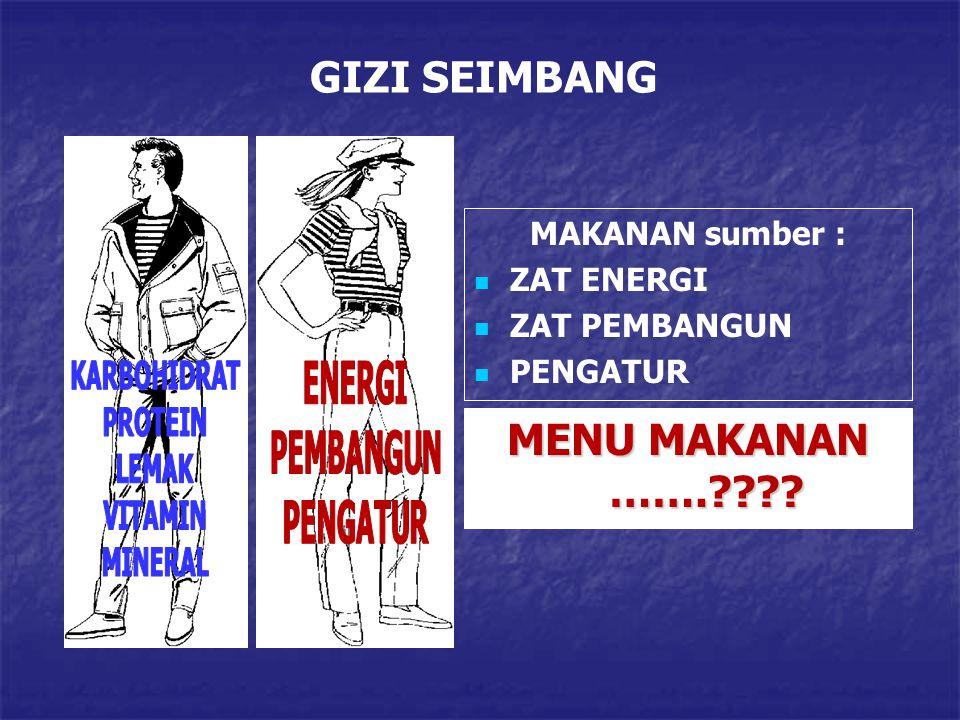 GIZI SEIMBANG MAKANAN sumber : ZAT ENERGI ZAT PEMBANGUN PENGATUR MENU MAKANAN …….????