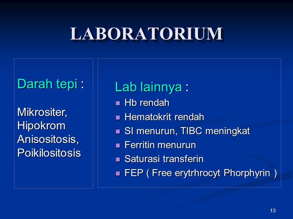 13 LABORATORIUMLABORATORIUM Lab lainnya : Lab lainnya : Hb rendah Hb rendah Hematokrit rendah Hematokrit rendah SI menurun, TIBC meningkat SI menurun,