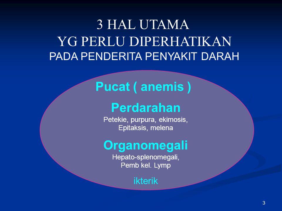 3 Pucat ( anemis ) Perdarahan Petekie, purpura, ekimosis, Epitaksis, melena Organomegali Hepato-splenomegali, Pemb kel. Lymp ikterik 3 HAL UTAMA YG PE