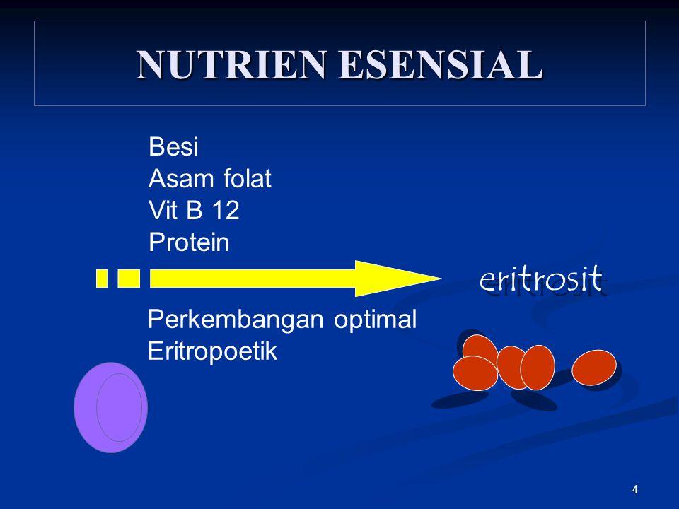 4 NUTRIEN ESENSIAL Perkembangan optimal Eritropoetik eritrosit Besi Asam folat Vit B 12 Protein