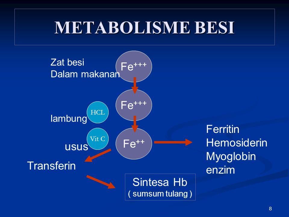 8 METABOLISME BESI Fe +++ Fe ++ Ferritin Hemosiderin Myoglobin enzim Transferin Sintesa Hb ( sumsum tulang ) lambung usus HCL Vit C Zat besi Dalam mak