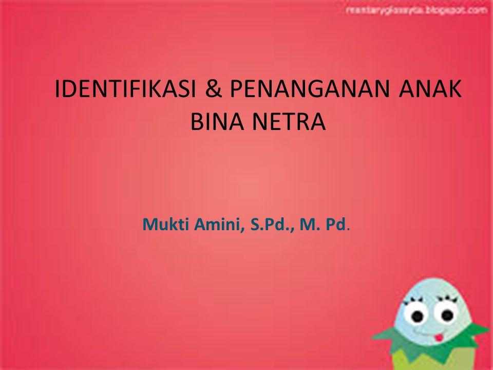 IDENTIFIKASI & PENANGANAN ANAK BINA NETRA Mukti Amini, S.Pd., M. Pd.