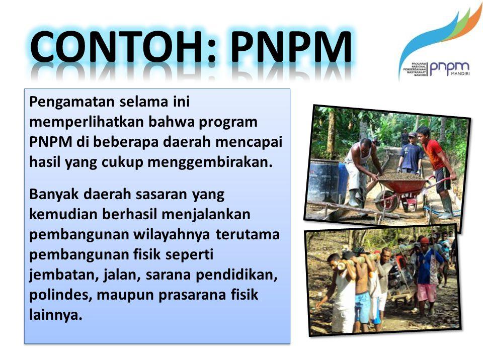Pengamatan selama ini memperlihatkan bahwa program PNPM di beberapa daerah mencapai hasil yang cukup menggembirakan.