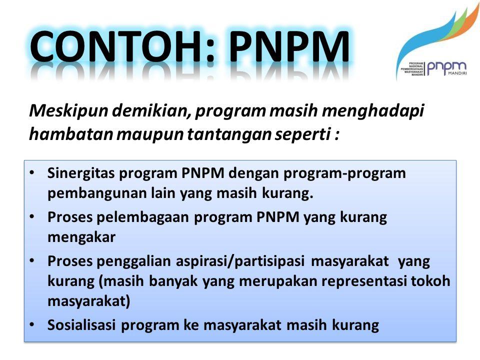 Sinergitas program PNPM dengan program-program pembangunan lain yang masih kurang.