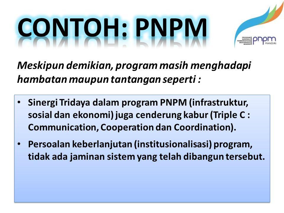 Sinergi Tridaya dalam program PNPM (infrastruktur, sosial dan ekonomi) juga cenderung kabur (Triple C : Communication, Cooperation dan Coordination).