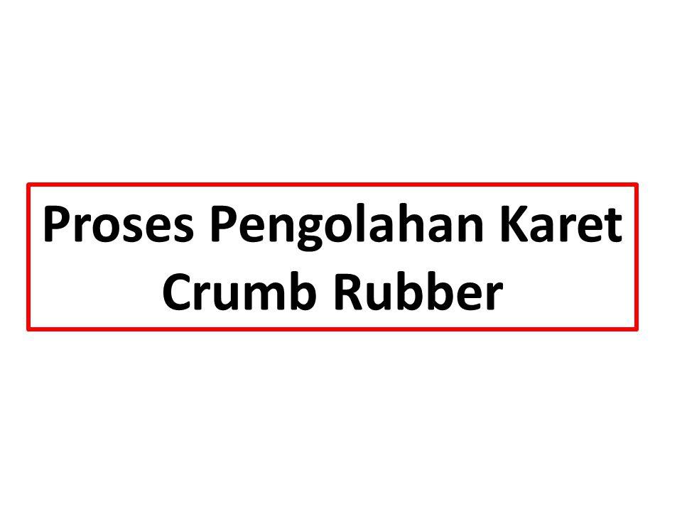Proses Pengolahan Karet Crumb Rubber