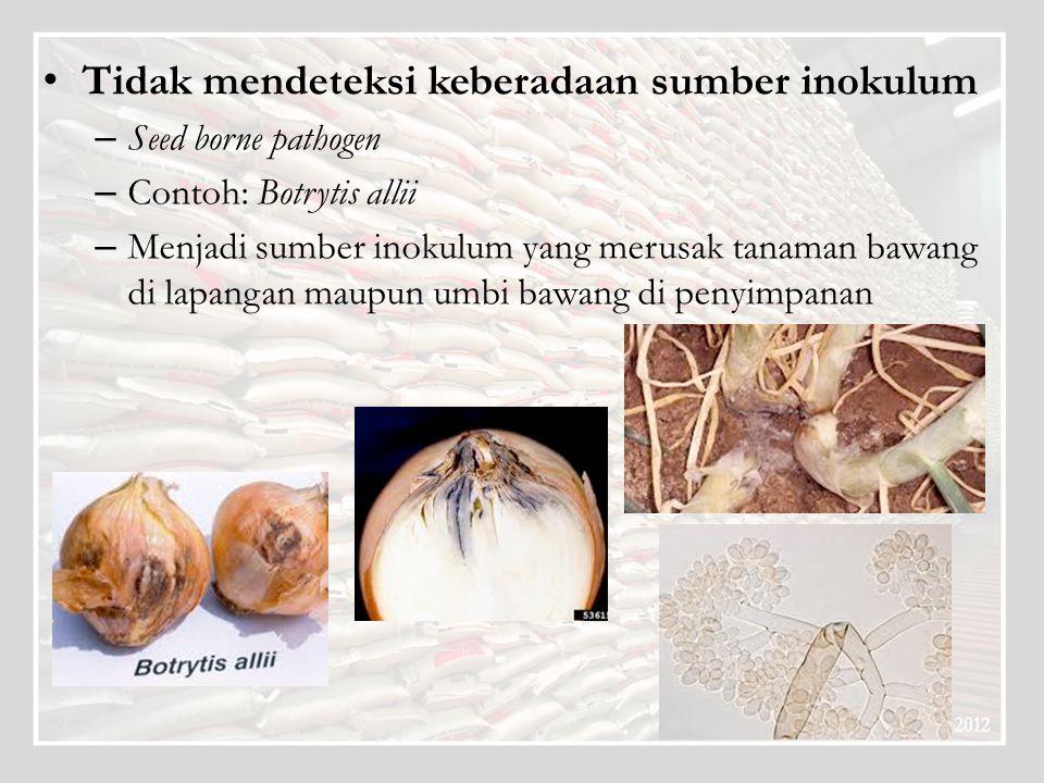 Tidak mendeteksi keberadaan sumber inokulum – Seed borne pathogen – Contoh: Botrytis allii – Menjadi sumber inokulum yang merusak tanaman bawang di la