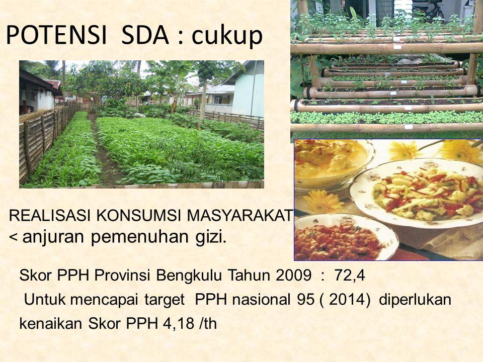 POTENSI SDA : cukup REALISASI KONSUMSI MASYARAKAT < anjuran pemenuhan gizi. Skor PPH Provinsi Bengkulu Tahun 2009 : 72,4 Untuk mencapai target PPH nas
