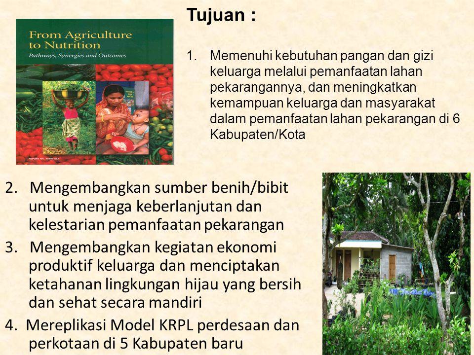 Waktu Pelaksanaan : Januari s/d Desember 2012 Cakupan Kegiatan –PRA –Display MKRPL di kompleks BPTP (display sayuran, ternak, dan Kebun Bibit Inti) –Kawasan model perkotaan di Desa Semarang (RT 4, 5, 8, 9, dan RT lain sebagai pengembangan tahun 2011) –Kawasan model Perdesaan di Desa Harapan Makmur Kabupaten Bengkulu Tengah –Kawasan RPL di 5 Kabupaten Baru yang mereplikasi model perkotaan dan perdesaan tahun 2011.