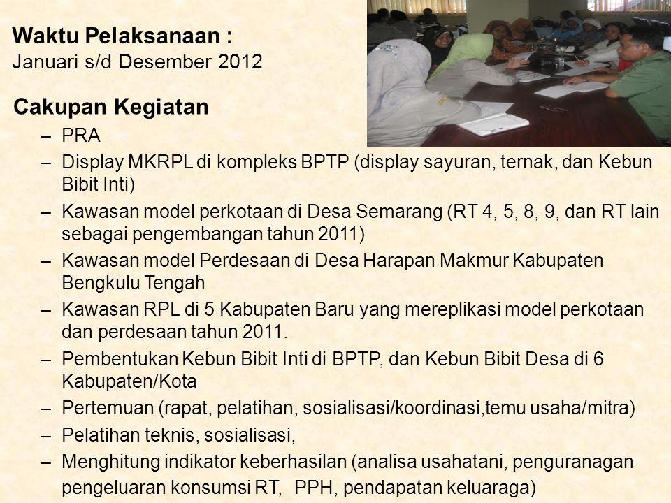 Waktu Pelaksanaan : Januari s/d Desember 2012 Cakupan Kegiatan –PRA –Display MKRPL di kompleks BPTP (display sayuran, ternak, dan Kebun Bibit Inti) –K