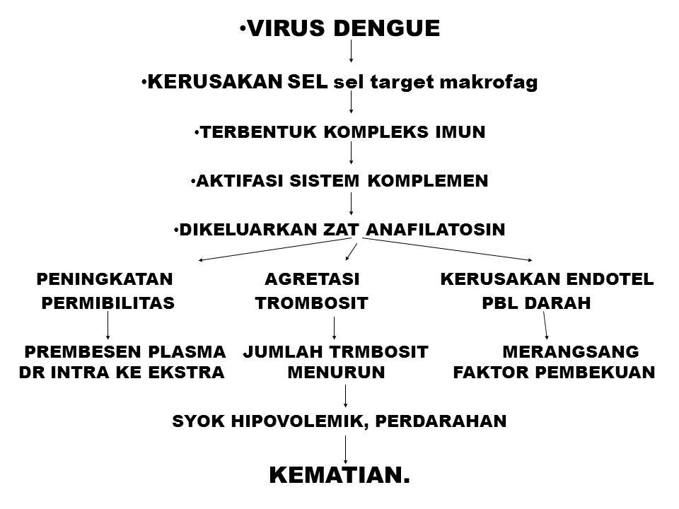 VIRUS DENGUE KERUSAKAN SEL sel target makrofag TERBENTUK KOMPLEKS IMUN AKTIFASI SISTEM KOMPLEMEN DIKELUARKAN ZAT ANAFILATOSIN PENINGKATAN AGRETASI KER