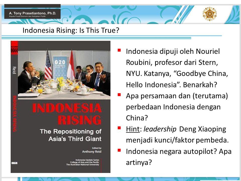 """ Indonesia dipuji oleh Nouriel Roubini, profesor dari Stern, NYU. Katanya, """"Goodbye China, Hello Indonesia"""". Benarkah?  Apa persamaan dan (terutama)"""