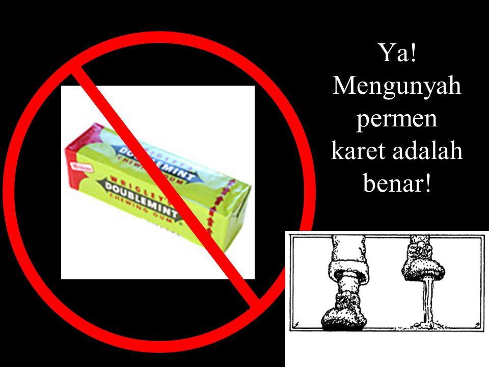 A – Kokain B – Alkohol C – Opium D – Semua jawaban salah Produk ini telah ditetapkan sebagai barang terkutuk oleh pemerintah Singapura, tidak bertoleransi diantara remaja.