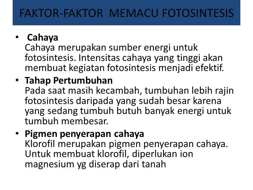 FAKTOR-FAKTOR MEMACU FOTOSINTESIS Cahaya Cahaya merupakan sumber energi untuk fotosintesis. Intensitas cahaya yang tinggi akan membuat kegiatan fotosi