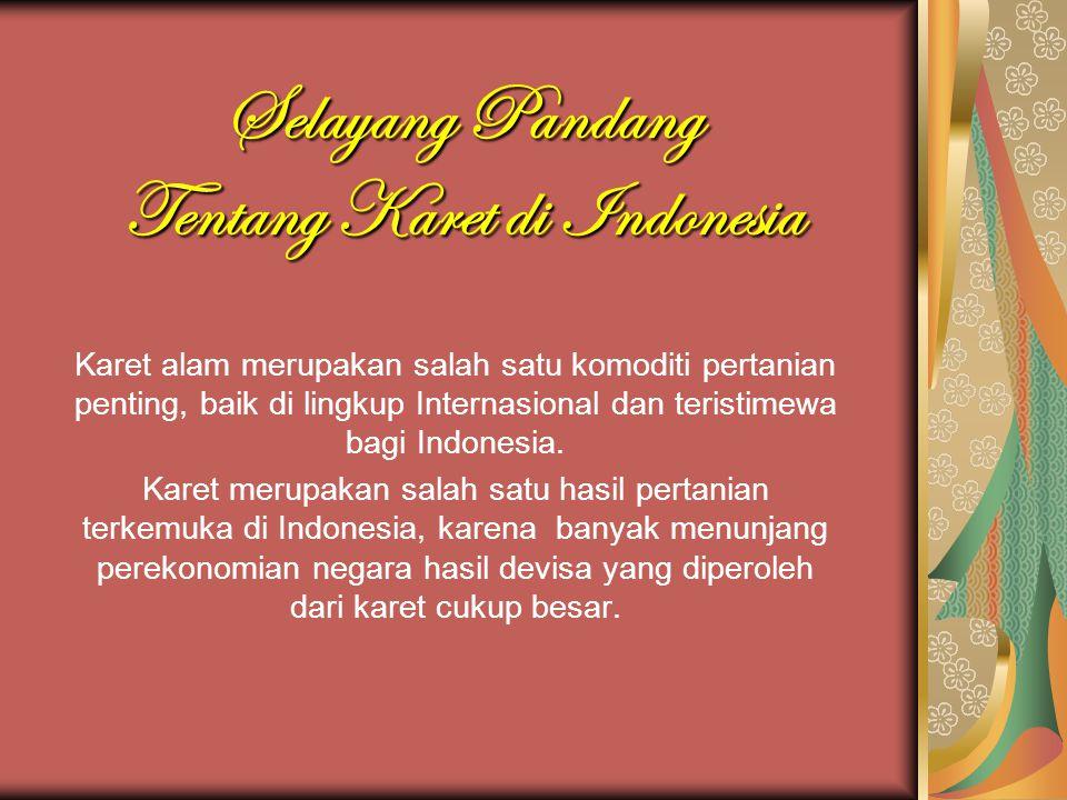 Selayang Pandang Tentang Karet di Indonesia Karet alam merupakan salah satu komoditi pertanian penting, baik di lingkup Internasional dan teristimewa