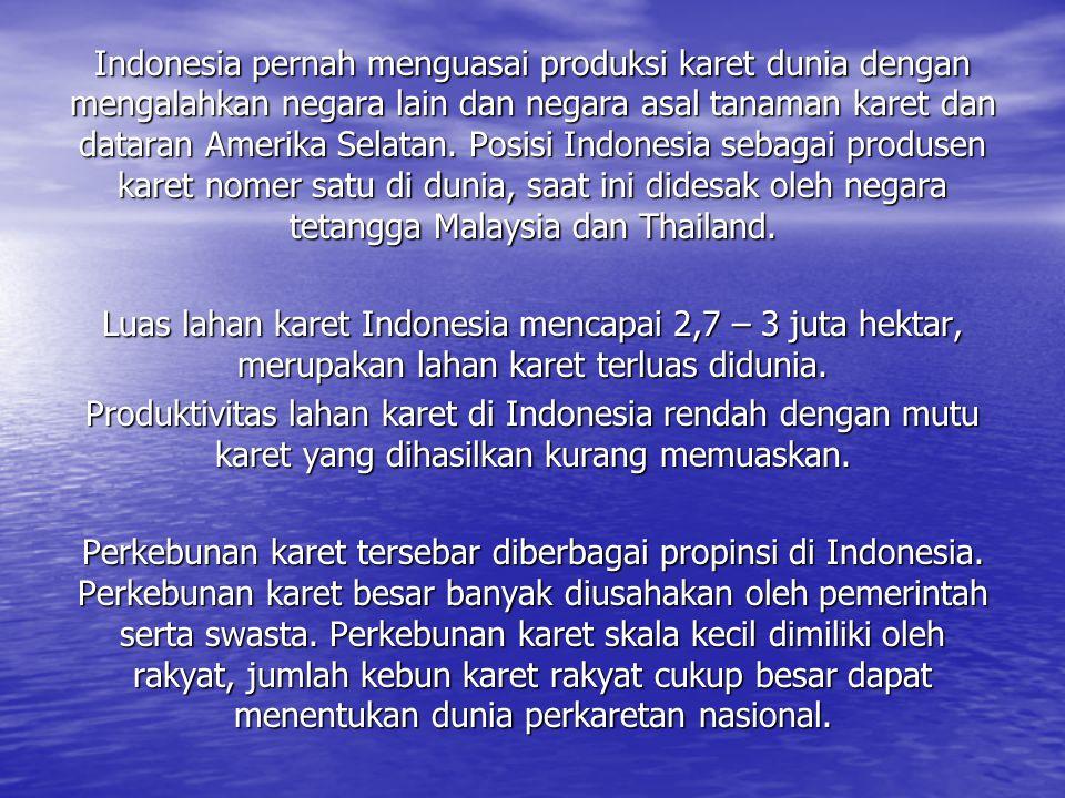 Indonesia pernah menguasai produksi karet dunia dengan mengalahkan negara lain dan negara asal tanaman karet dan dataran Amerika Selatan. Posisi Indon