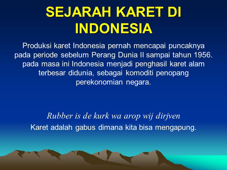 SEJARAH KARET DI INDONESIA Produksi karet Indonesia pernah mencapai puncaknya pada periode sebelum Perang Dunia II sampai tahun 1956. pada masa ini In