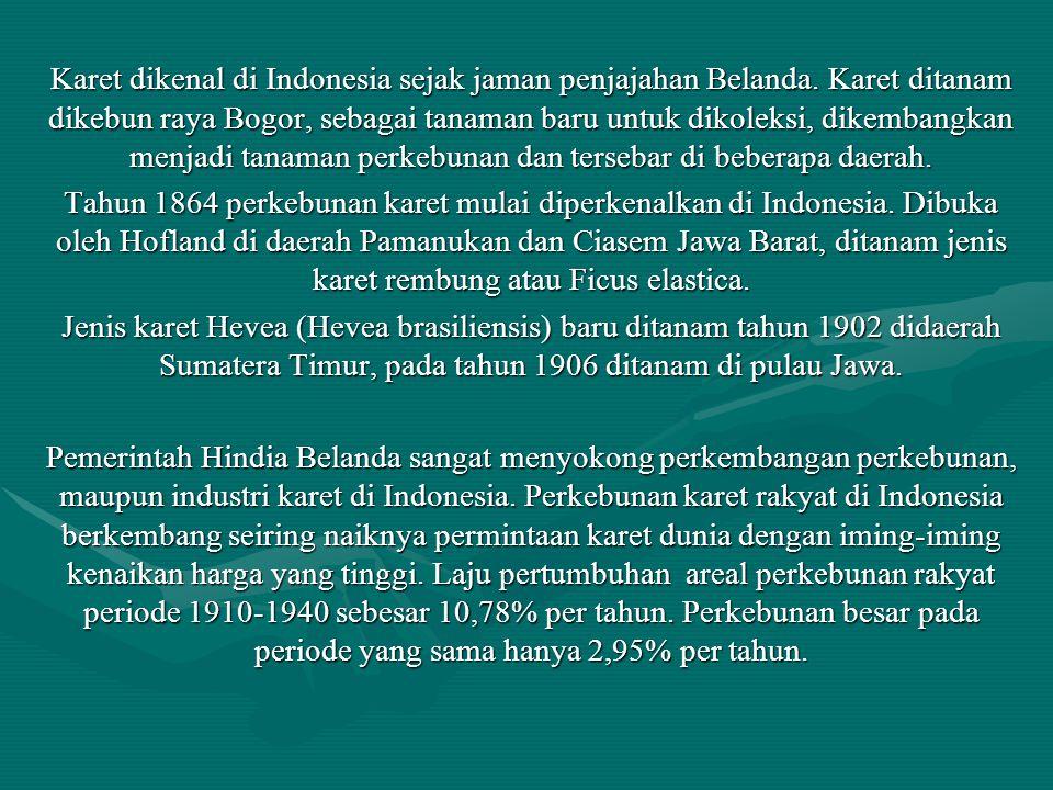 Karet dikenal di Indonesia sejak jaman penjajahan Belanda. Karet ditanam dikebun raya Bogor, sebagai tanaman baru untuk dikoleksi, dikembangkan menjad
