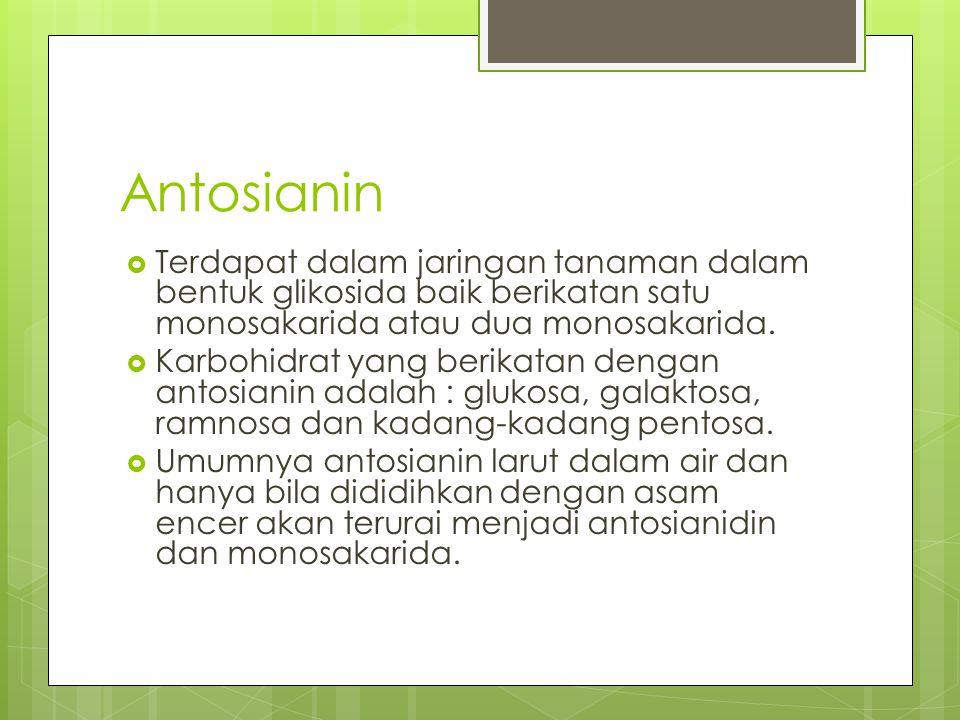 Antosianin  Terdapat dalam jaringan tanaman dalam bentuk glikosida baik berikatan satu monosakarida atau dua monosakarida.  Karbohidrat yang berikat