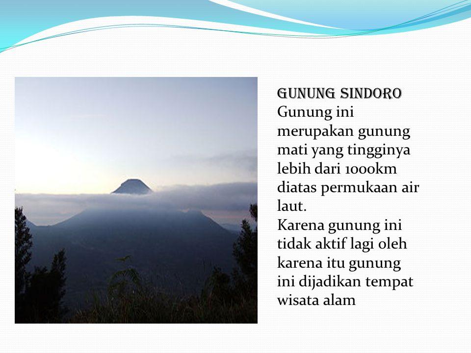 GUnUNG SINDORO Gunung ini merupakan gunung mati yang tingginya lebih dari 1000km diatas permukaan air laut.