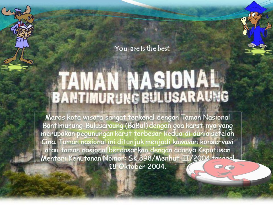 . Maros kota wisata sangat terkenal dengan Taman Nasional Bantimurung-Bulusaraung (BaBul) dengan goa karst-nya yang merupakan pegunungan karst terbesa