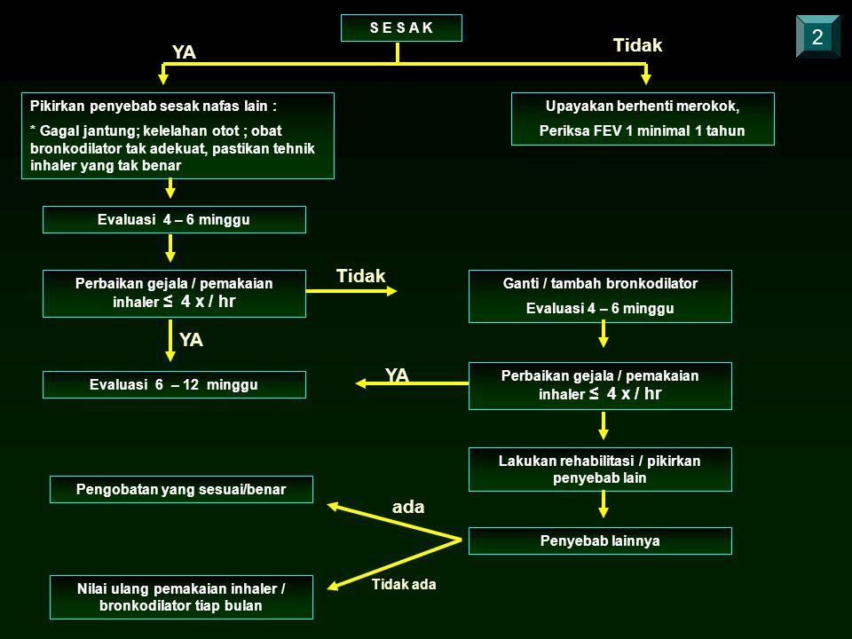 Pikirkan penyebab sesak nafas lain : * Gagal jantung; kelelahan otot ; obat bronkodilator tak adekuat, pastikan tehnik inhaler yang tak benar Upayakan berhenti merokok, Periksa FEV 1 minimal 1 tahun 2 S E S A K YA Tidak Evaluasi 4 – 6 minggu Perbaikan gejala / pemakaian inhaler ≤ 4 x / hr Evaluasi 6 – 12 minggu Ganti / tambah bronkodilator Evaluasi 4 – 6 minggu Perbaikan gejala / pemakaian inhaler ≤ 4 x / hr Lakukan rehabilitasi / pikirkan penyebab lain Penyebab lainnya Nilai ulang pemakaian inhaler / bronkodilator tiap bulan Pengobatan yang sesuai/benar Tidak YA ada Tidak ada
