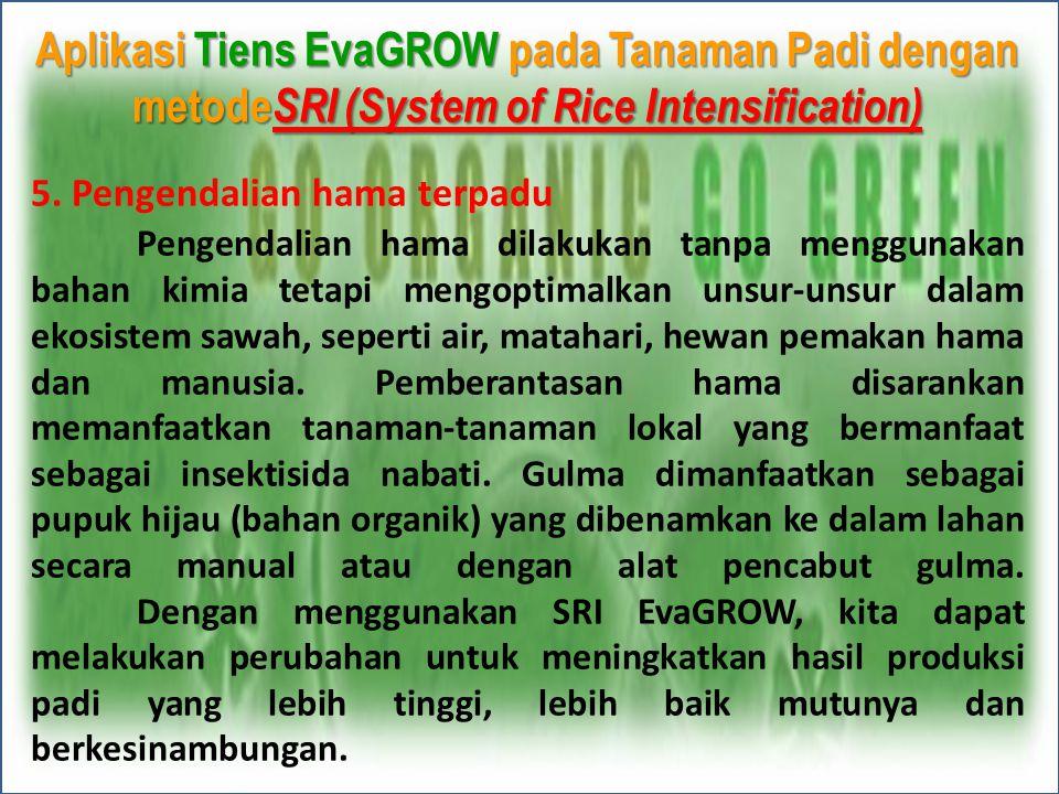 Aplikasi Tiens EvaGROW pada Tanaman Padi dengan metode SRI (System of Rice Intensification) 5. Pengendalian hama terpadu Pengendalian hama dilakukan t
