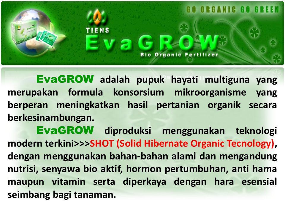 EvaGROW adalah pupuk hayati multiguna yang merupakan formula konsorsium mikroorganisme yang berperan meningkatkan hasil pertanian organik secara berke