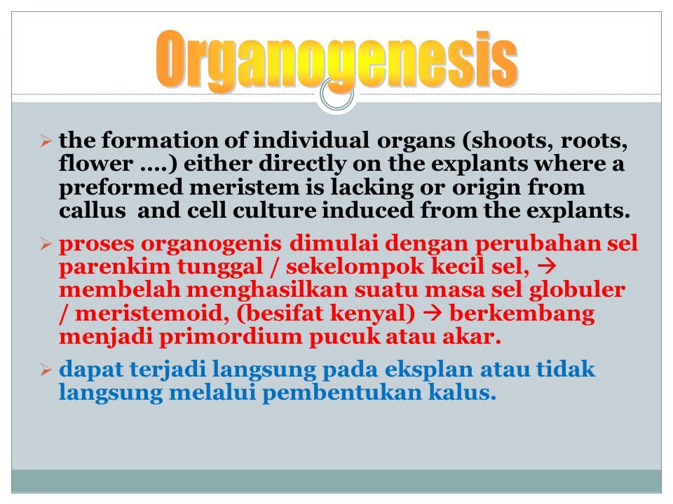  the formation of individual organs (shoots, roots, flower ….) either directly on the explants where a preformed meristem is lacking or origin from callus and cell culture induced from the explants.