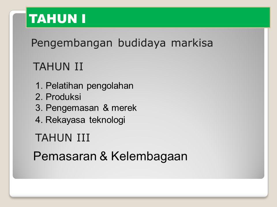 TAHUN I Pengembangan budidaya markisa 1.Pelatihan pengolahan 2.Produksi 3.Pengemasan & merek TAHUN II TAHUN III 4. Rekayasa teknologi Pemasaran & Kele