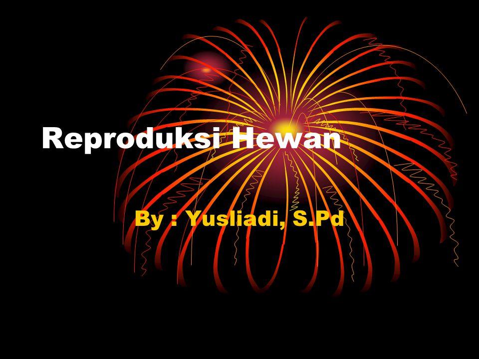 Reproduksi Hewan By : Yusliadi, S.Pd