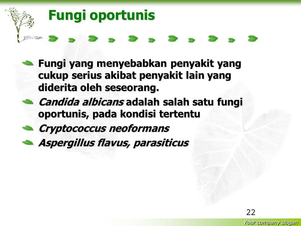 Your company slogan 21 Mikotoksin Mikotoksin merupakan metabolit sekunder fungi yang dikeluarkan umumnya untuk salah satu pertahanan dirinya terhadap