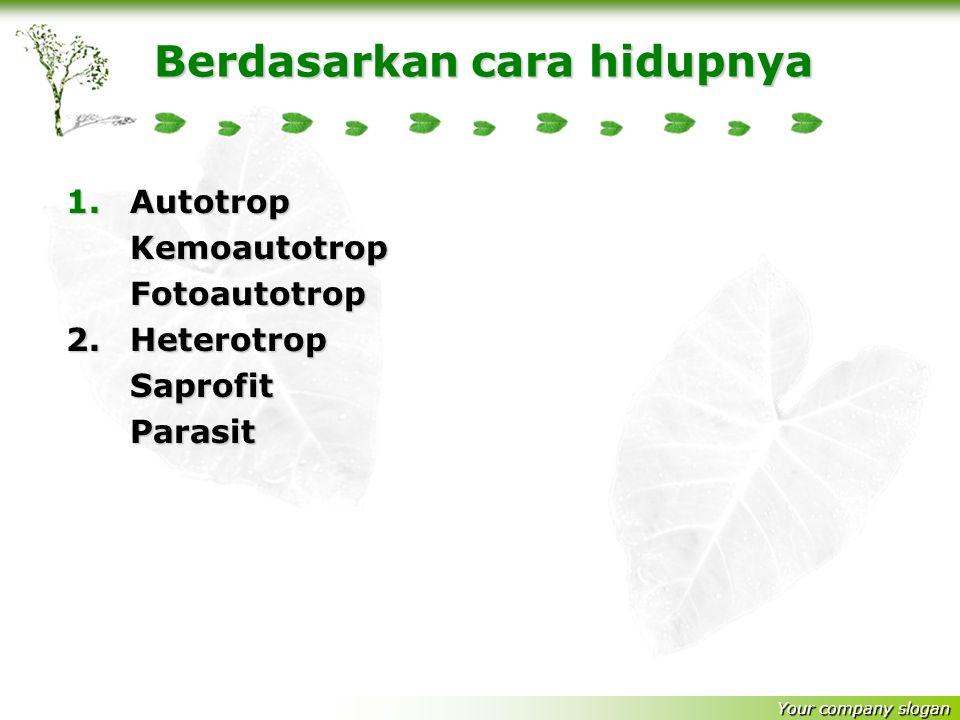 Your company slogan Anaerob Contoh bakteri denitrifikan : Micrococcus denitrificans + Clastridisium tetani yang merugikan pertanian Aerob fakultatif A