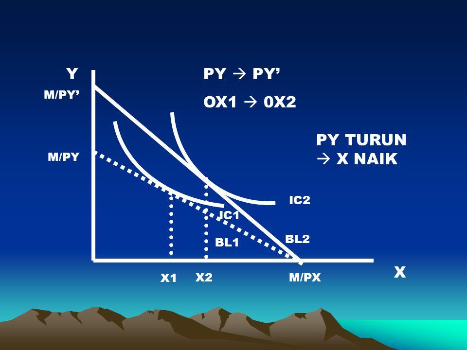 Y X BL1 IC1 M/PY M/PXX2 PY  PY' OX1  0X2 BL2 IC2 X1 PY TURUN  X NAIK M/PY'