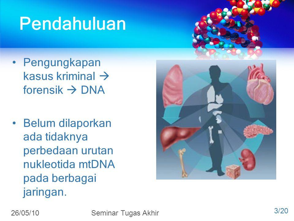 Pendahuluan Pengungkapan kasus kriminal  forensik  DNA Belum dilaporkan ada tidaknya perbedaan urutan nukleotida mtDNA pada berbagai jaringan. 3/20