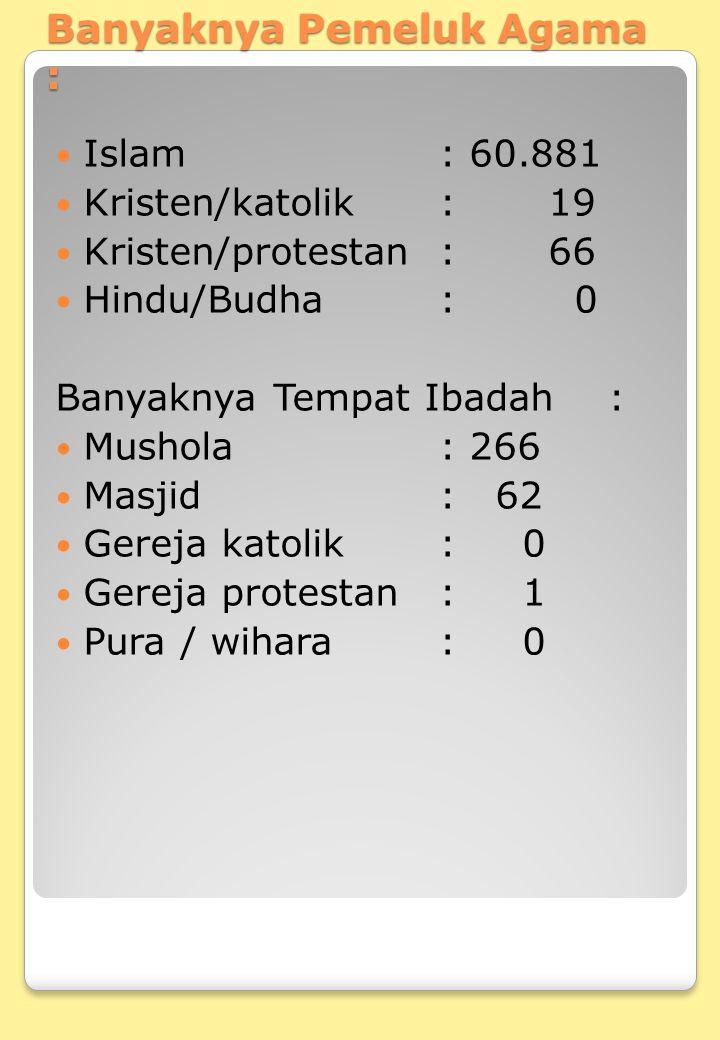 Banyaknya Pemeluk Agama : Islam: 60.881 Kristen/katolik: 19 Kristen/protestan: 66 Hindu/Budha: 0 Banyaknya Tempat Ibadah : Mushola: 266 Masjid: 62 Ger