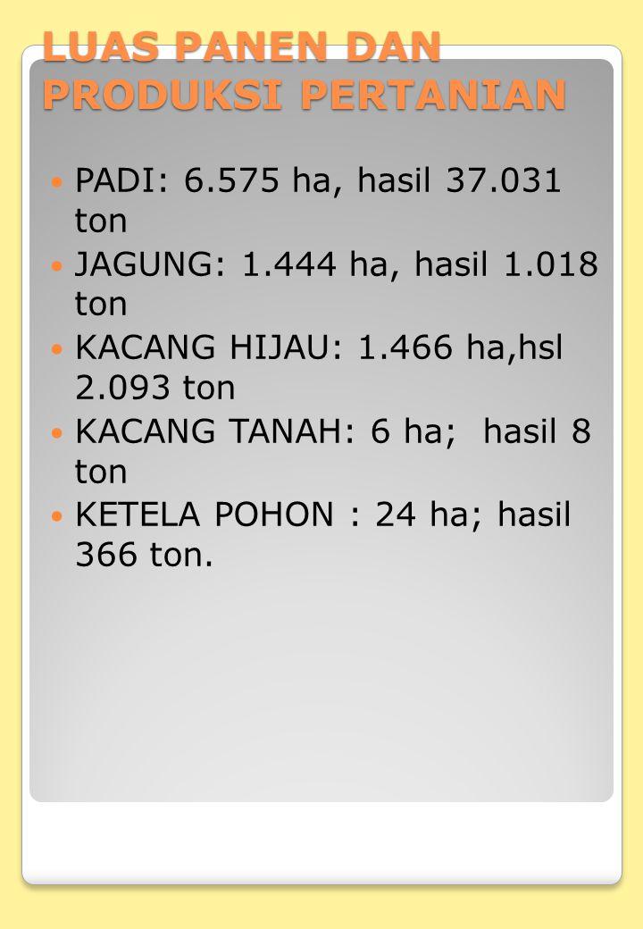 LUAS PANEN DAN PRODUKSI PERTANIAN PADI: 6.575 ha, hasil 37.031 ton JAGUNG: 1.444 ha, hasil 1.018 ton KACANG HIJAU: 1.466 ha,hsl 2.093 ton KACANG TANAH