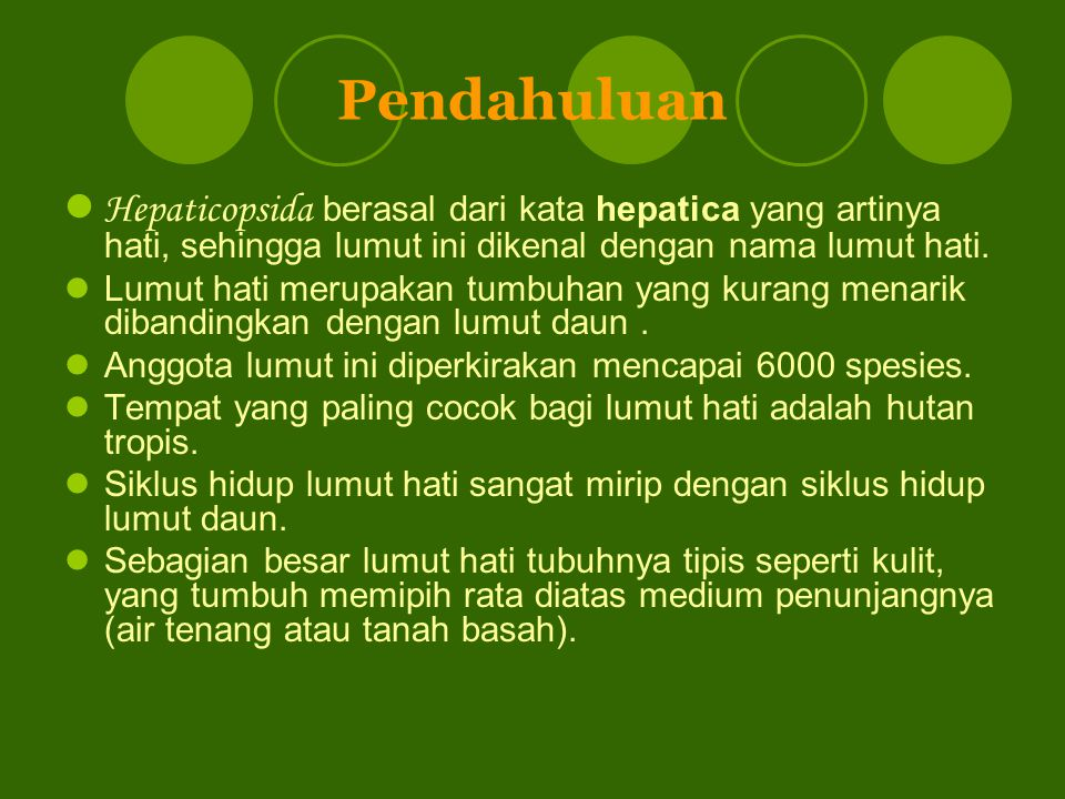 Ciri-ciri umum Gametofit berwarna hijau, pipih dorsiventral, menempel pada tanah dengan rizoid.