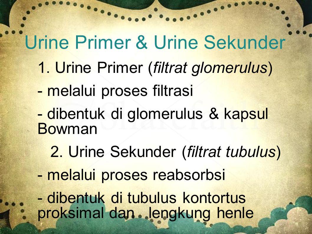 Urine Dalam keadaan normal urine mengandung: 1. air, urea, amonia 2. Garam mineral 3. Zat warna empedu (birilubin) 4. Zat yang berlebihan dalam darah