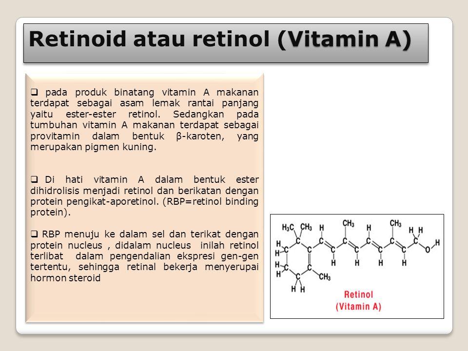 Vitamin A) Retinoid atau retinol (Vitamin A)  pada produk binatang vitamin A makanan terdapat sebagai asam lemak rantai panjang yaitu ester-ester ret