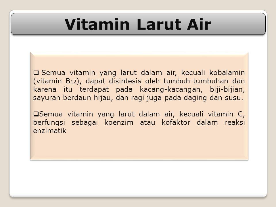 Vitamin Larut Air  Semua vitamin yang larut dalam air, kecuali kobalamin (vitamin B 12 ), dapat disintesis oleh tumbuh-tumbuhan dan karena itu terdap