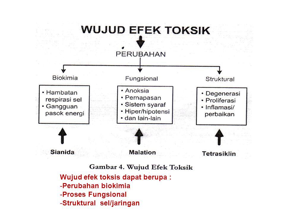 Wujud efek toksis dapat berupa : -Perubahan biokimia -Proses Fungsional -Struktural sel/jaringan