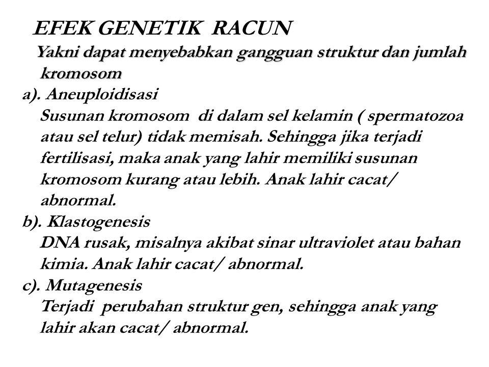 EFEK GENETIK RACUN Yakni dapat menyebabkan gangguan struktur dan jumlah kromosom Yakni dapat menyebabkan gangguan struktur dan jumlah kromosom a). Ane