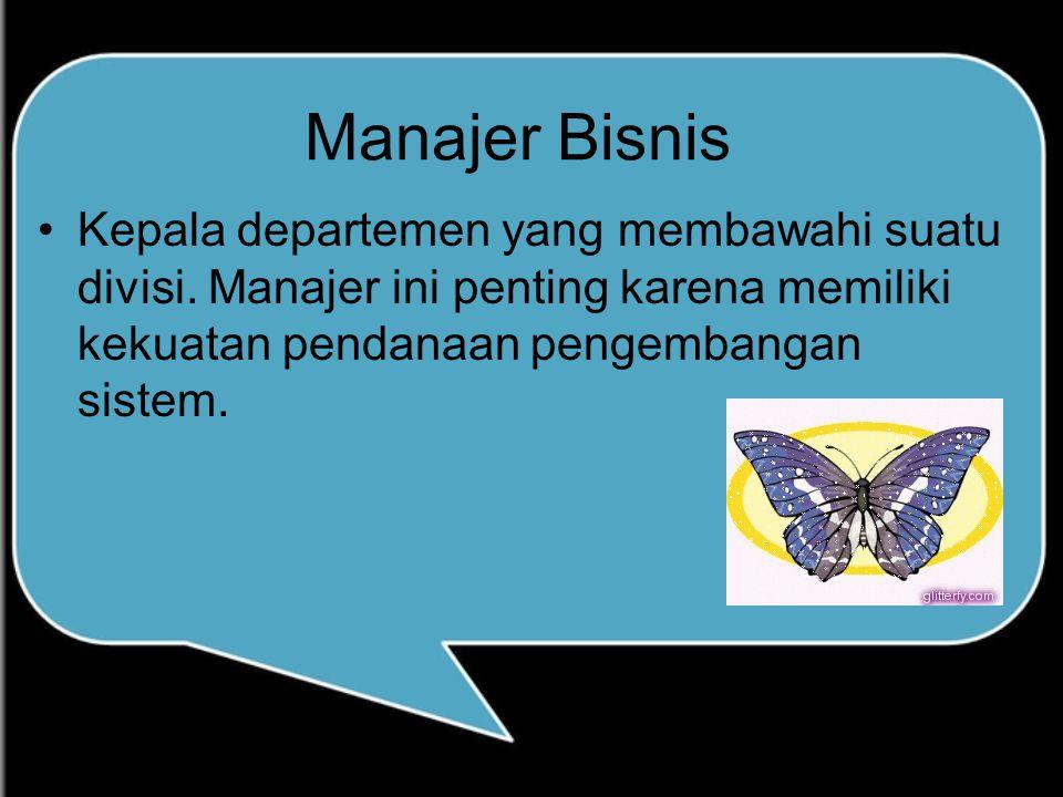 Manajer Bisnis Kepala departemen yang membawahi suatu divisi. Manajer ini penting karena memiliki kekuatan pendanaan pengembangan sistem.