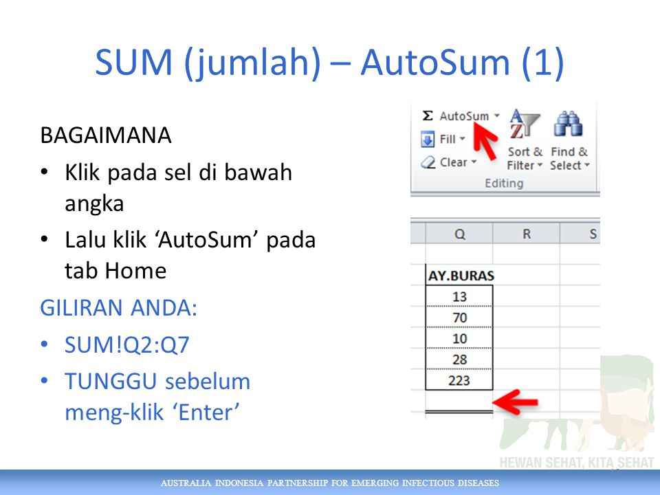 AUSTRALIA INDONESIA PARTNERSHIP FOR EMERGING INFECTIOUS DISEASES SUM (jumlah) – AutoSum (1) BAGAIMANA Klik pada sel di bawah angka Lalu klik 'AutoSum' pada tab Home GILIRAN ANDA: SUM!Q2:Q7 TUNGGU sebelum meng-klik 'Enter' 13