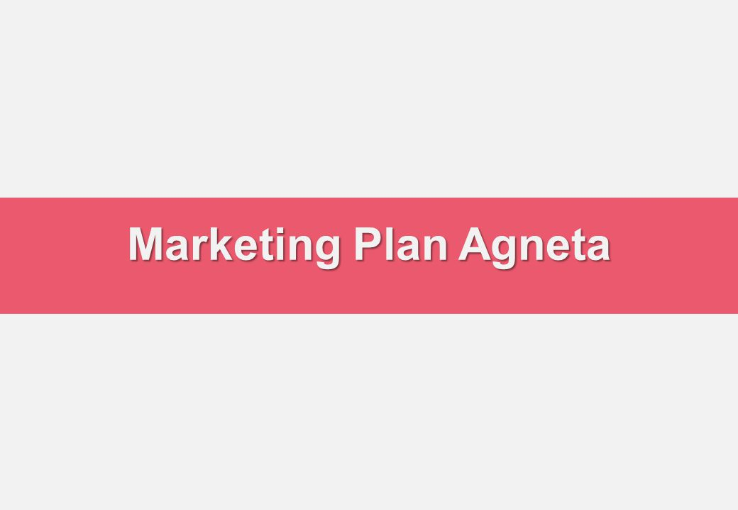 Marketing Plan Agneta