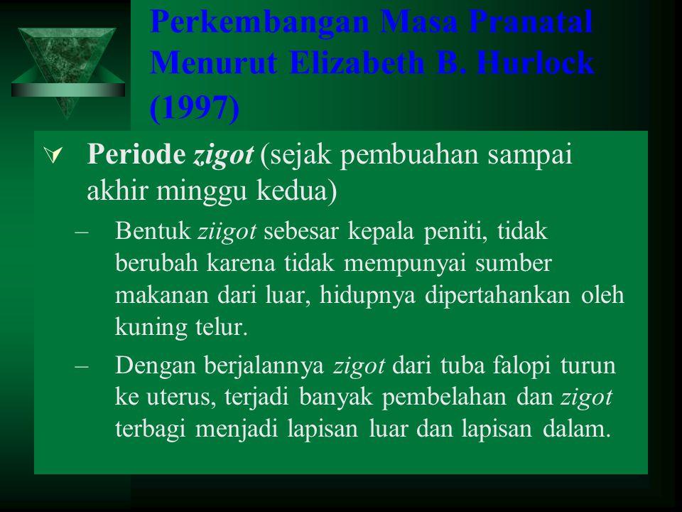 Perkembangan Masa Pranatal Menurut Elizabeth B. Hurlock (1997)  Periode zigot (sejak pembuahan sampai akhir minggu kedua) –Bentuk ziigot sebesar kepa