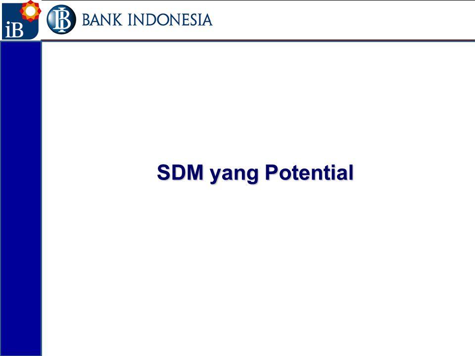 SDM yang Potential 17
